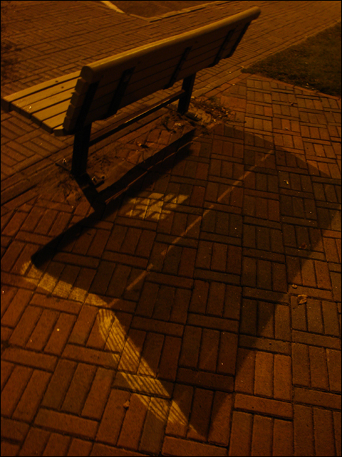 Bible Bench by Roadsworth